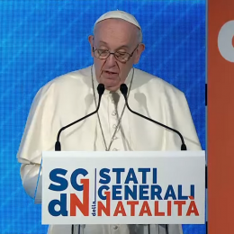 Papež na srečanju o rodnosti (photo: Posnetek zaslona)